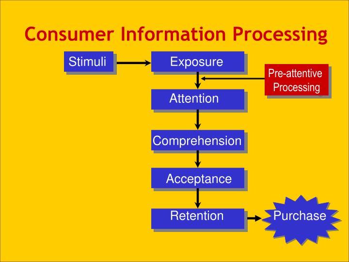 Consumer Information Processing