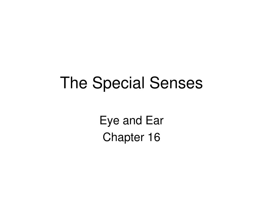 PPT - The Special Senses PowerPoint Presentation - ID:143018