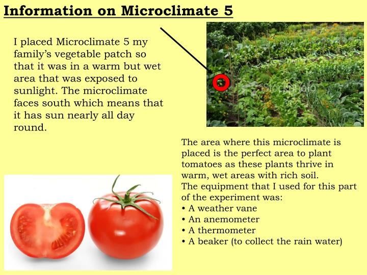 Information on Microclimate 5