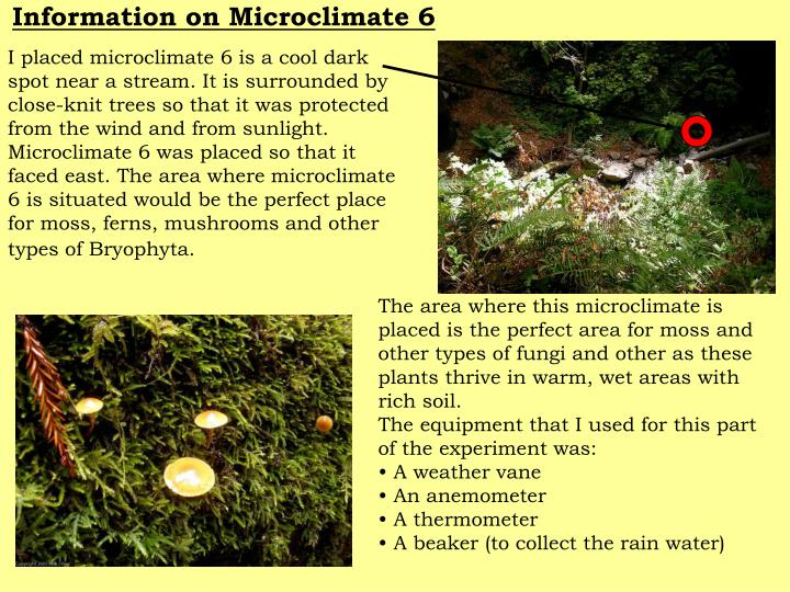 Information on Microclimate 6