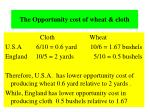 the opportunity cost of wheat cloth