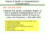 report a death or hospitalization catastrophe