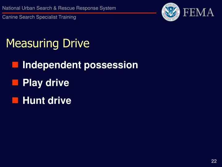 Measuring Drive