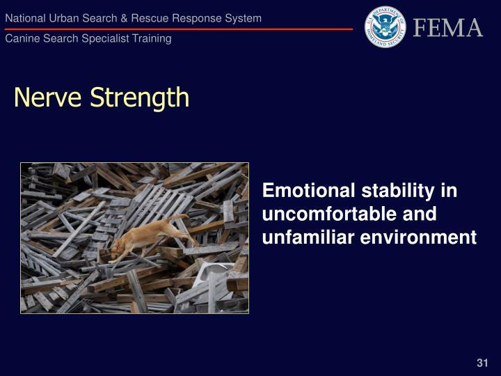 Nerve Strength