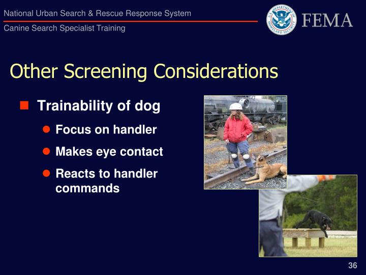 Other Screening Considerations