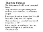 shipping bananas