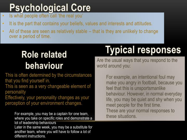slide11-n What Is Martens Schematic View Of Personality on