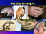 handling techniques2