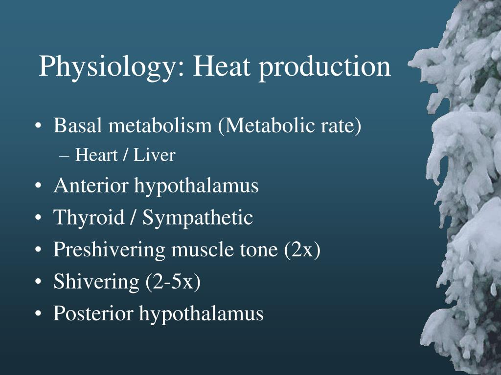 Physiology: Heat production
