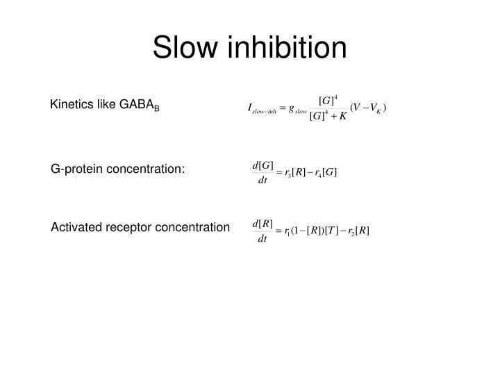 Slow inhibition