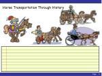 horse transportation through history