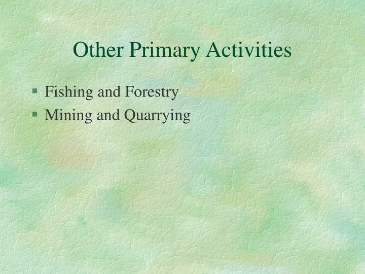 Other Primary Activities