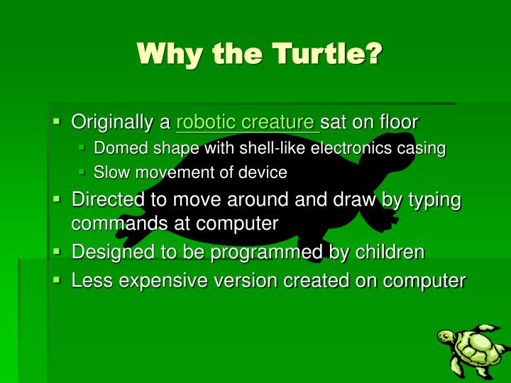 Why the turtle