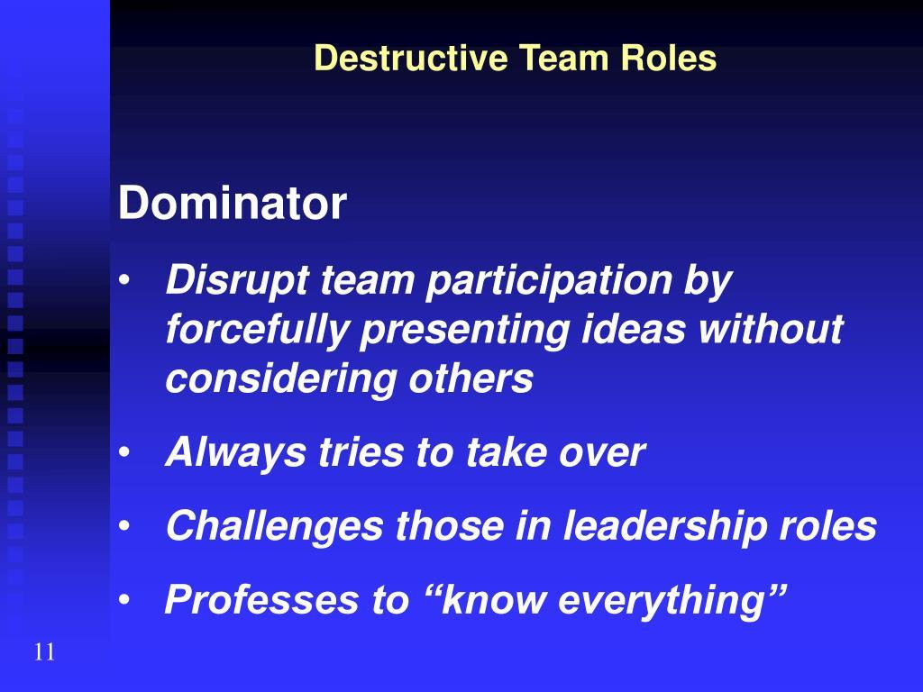 Destructive Team Roles