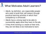 what motivates adult learners
