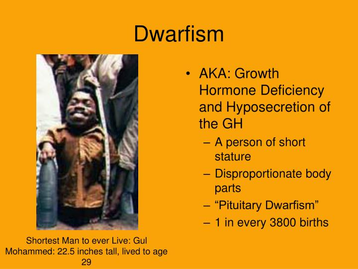 pituitary dwarfism Pituitary dwarfism (dwarfism) - a disease characterized by a delay of physical development and growth associated with insufficient secretion of growth hormone (gh) by the anterior.