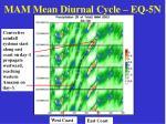 mam mean diurnal cycle eq 5n