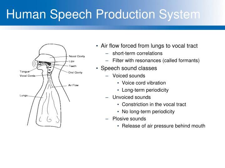 Human Speech Production System