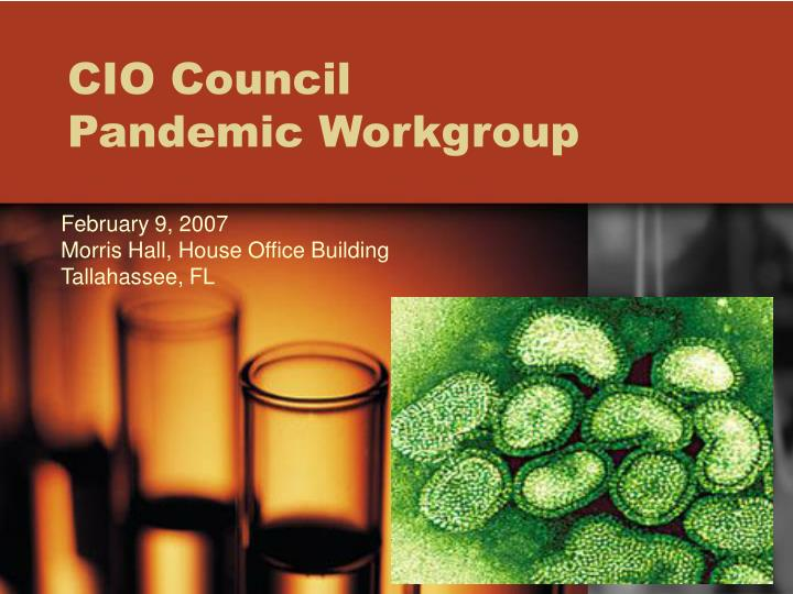 cio council pandemic workgroup n.