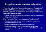 irregular undocumented migration