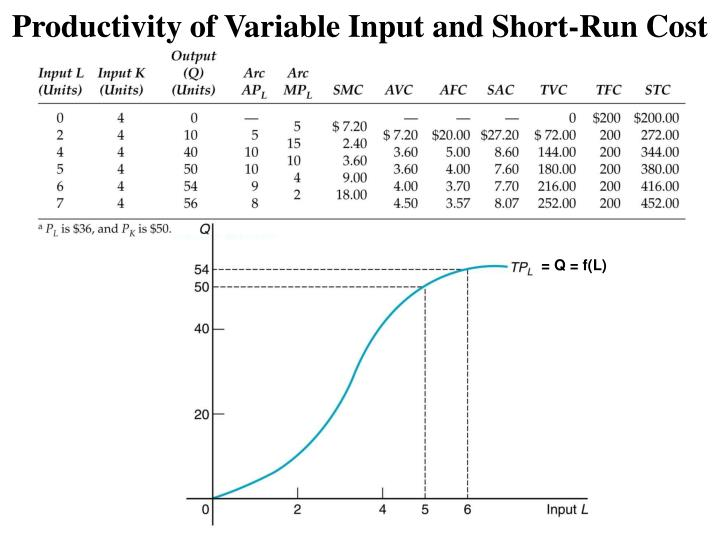 Productivity of Variable Input and Short-Run Cost