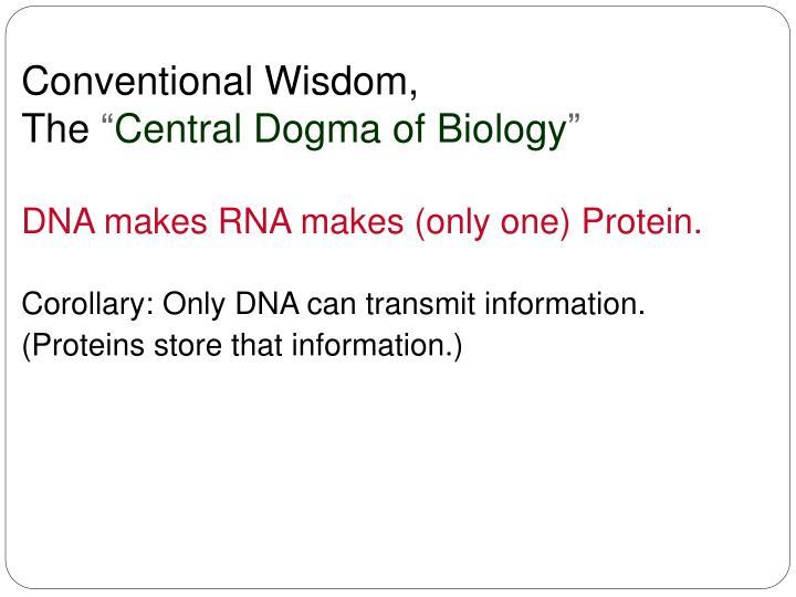 Conventional Wisdom,
