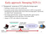 early approach snooping tcp 1