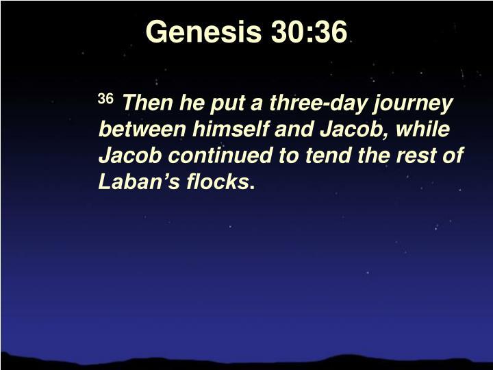 Genesis 30:36