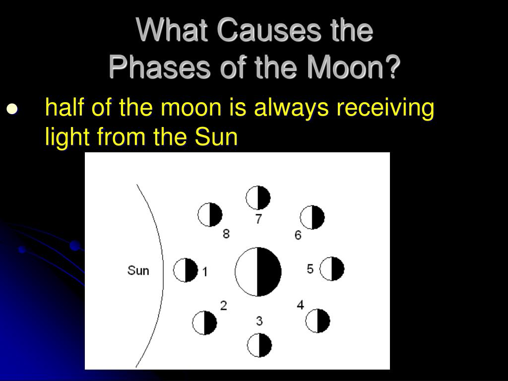 PPT - The Moon's Phases PowerPoint Presentation - ID:1435320