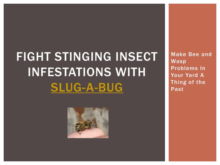 fight stinging insect infestations with slug a bug n.