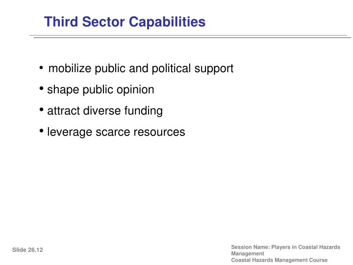 Third Sector Capabilities