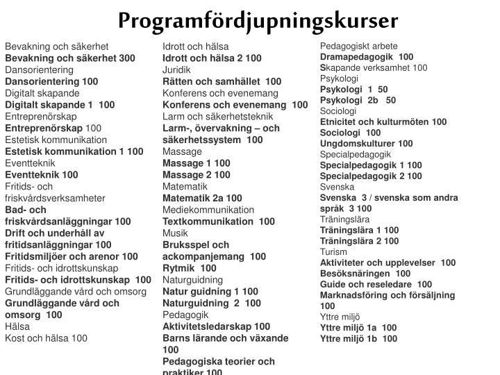 Programfördjupningskurser