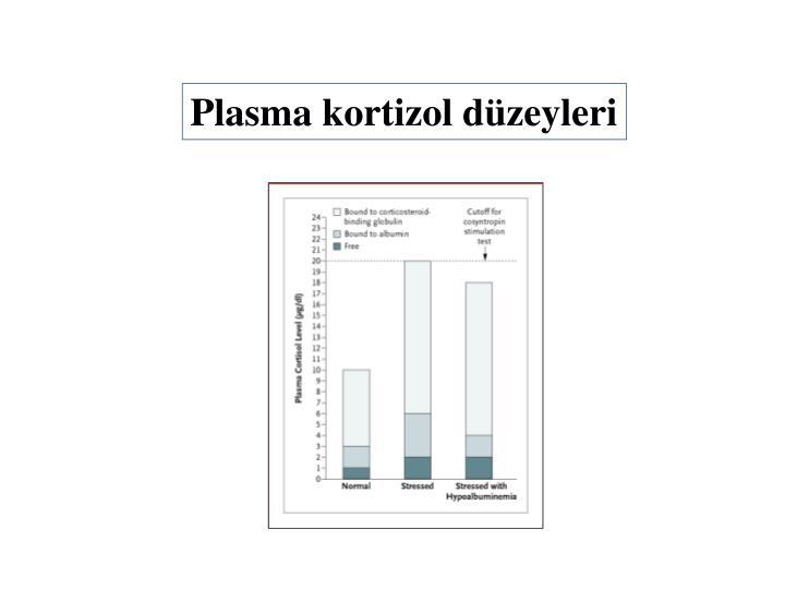 Plasma kortizol düzeyleri
