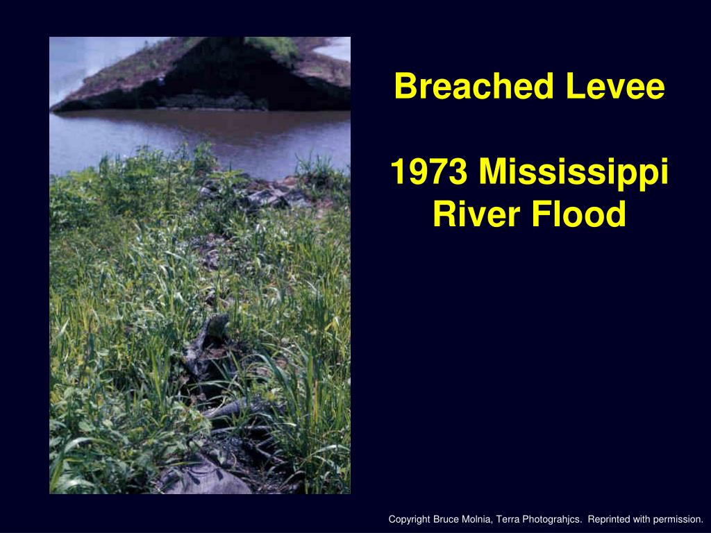Breached Levee