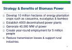 strategy benefits of biomass power