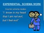 experiential schema work