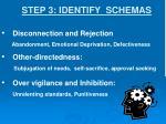 step 3 identify schemas