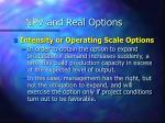 npv and real options13