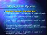npv and real options32