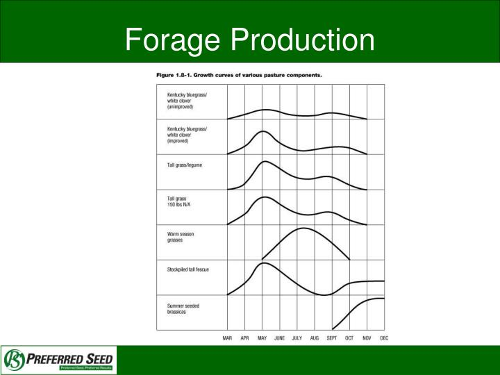 Forage Production