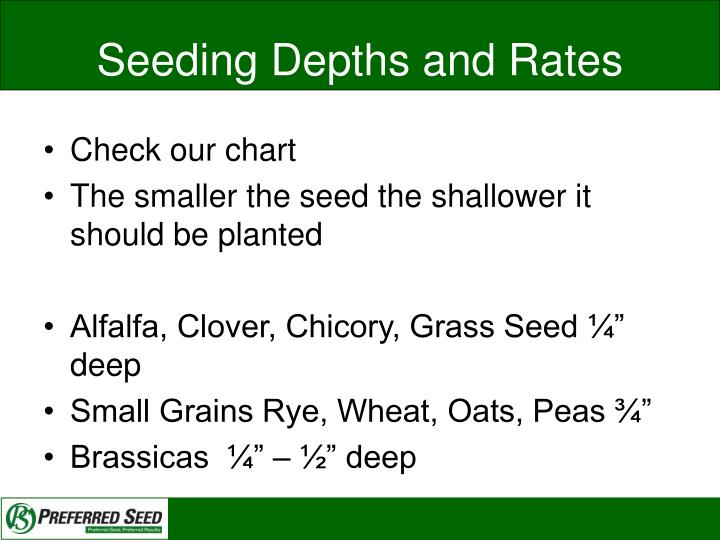 Seeding Depths and Rates