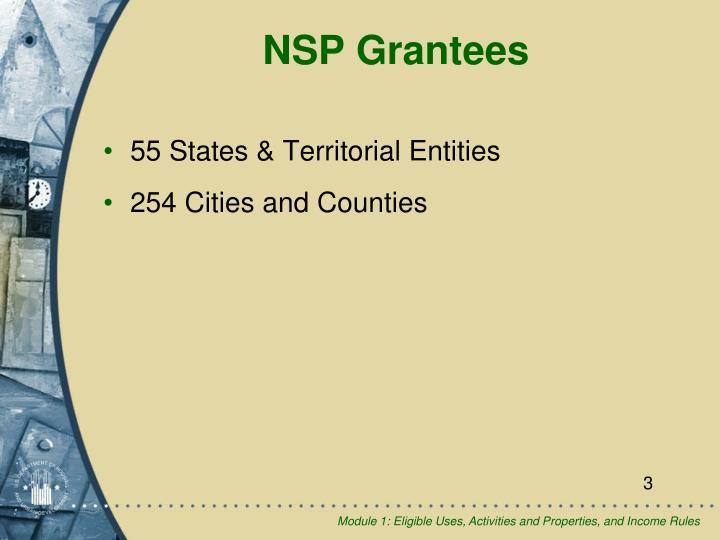 Nsp grantees