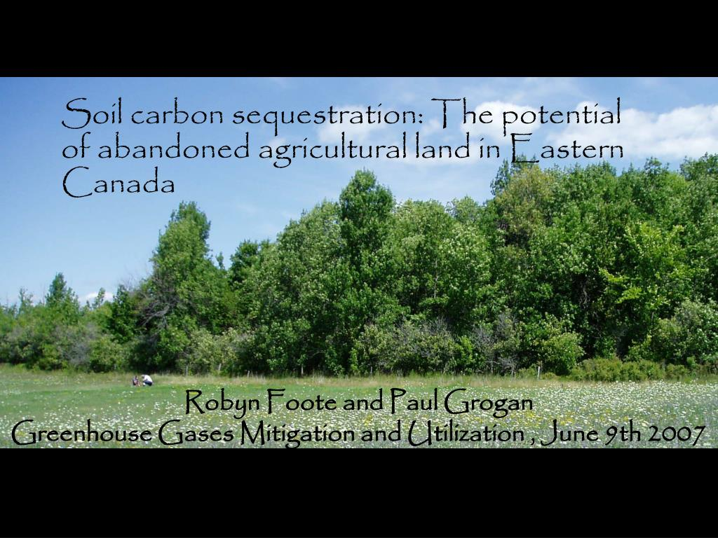 soil carbon sequestration the potential of abandoned agricultural land in eastern canada l.