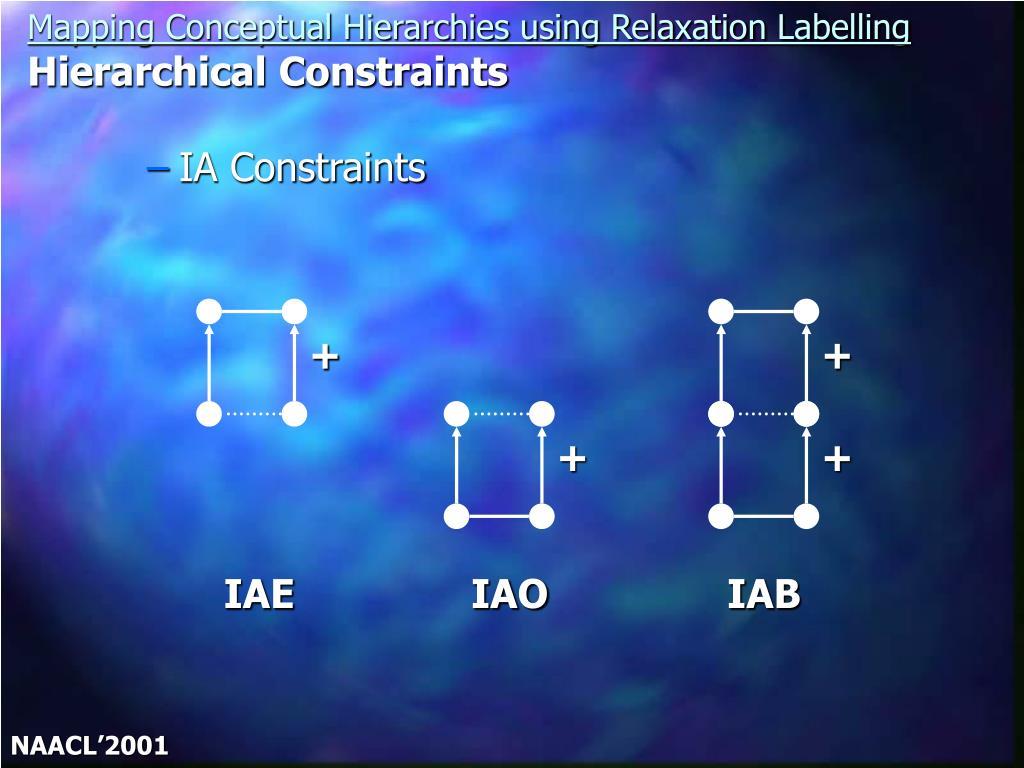 IA Constraints