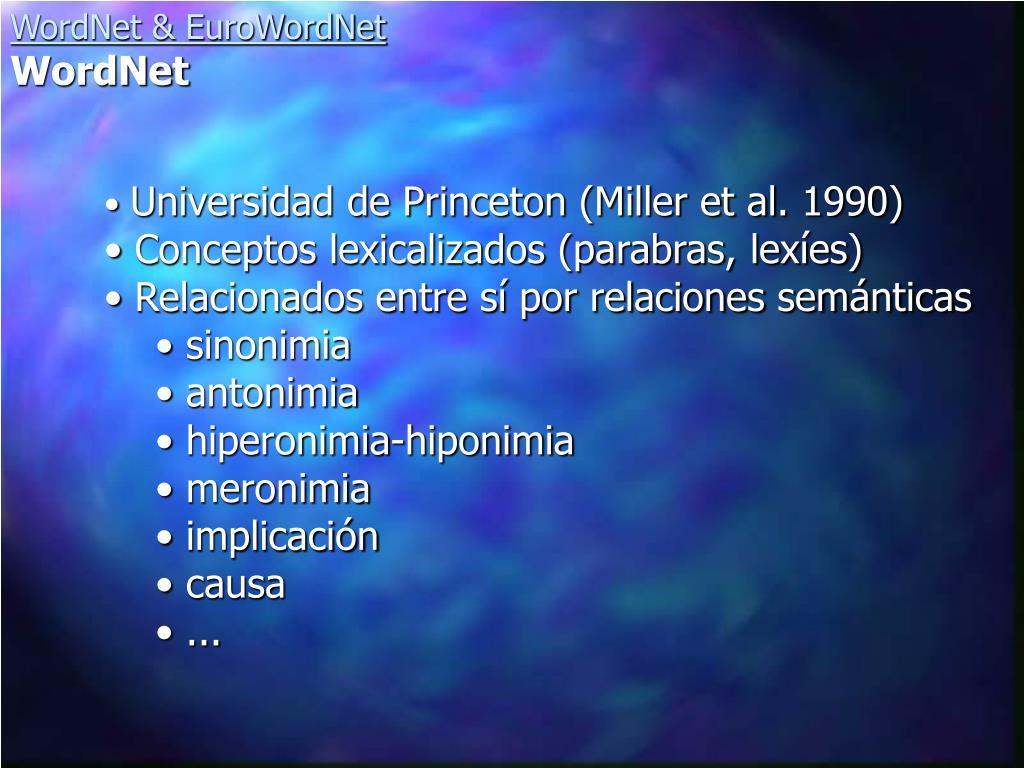 Universidad de Princeton (Miller et al. 1990)