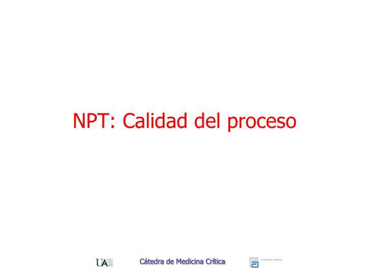 NPT: Calidad del proceso