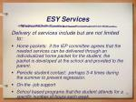 esy services1