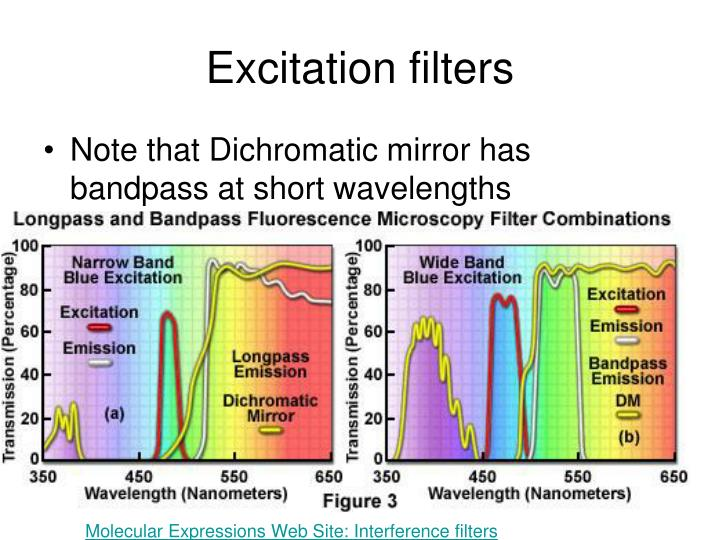 Excitation filters