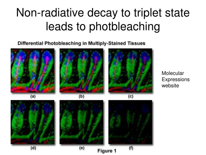 Non-radiative decay to triplet state leads to photbleaching