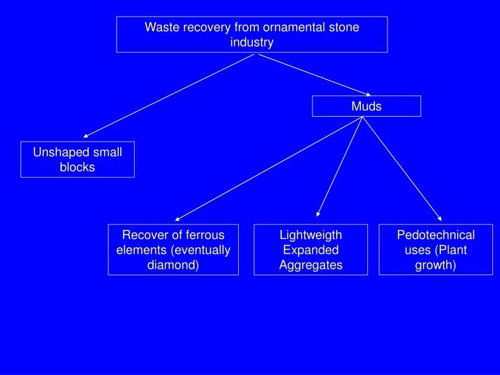 Waste recovery from ornamental stone industry